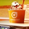 $9 for Frozen Yogurt at Orange Leaf