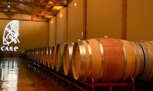 Care: Visita a bodegas y degustación de 3 tapas maridadas con 3 vinos y 1 o 2 botellas para 2 o 4 desde 12,90 € en Care