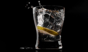 Alchemist Holdings: $39 for an Entry for One Person to Gin! The Show at the Stamford Plaza, Sydney Airport - 7 April 2018 (Up to $60 Value)