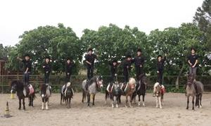 Cavalieri di Sant'Efisio: 3 o 5 lezioni di equitazione per bambini da 60 minuti da Cavalieri di S.Efisio (sconto fino a 60%)