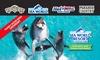 Sea World Resort: 5 Nights, 4ppl + UNLIMITED Theme Parks