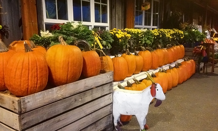 Gramma's Farm Store - Sherwood - Tualatin North: Corn Maze and Harvest Festival Activities for One or Two at Gramma's Farm Store (Up to 50% Off)