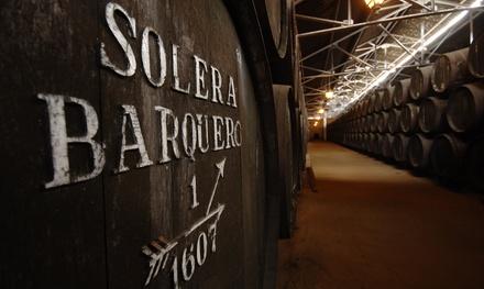 Visita a bodega con cata de vinos y aperitivo para 2, 4 o 6 personas desde 12,95 € en Bodegas Pérez Barquero