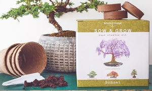 Nature's Blossom Bonsai Garden Indoor Seed Starter Kit (4-Pack)