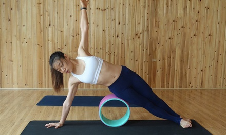 Yoga/Pilates Ring ($15) or DharmaCircle ($24) (Don't Pay up to $129)