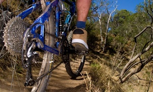 Bikes4ushop: $216 for $480 Worth of Mountain Biking — Bikes4uShop