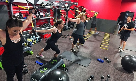 One Month of Unlimited Fitness Classes for One or Two at Shredz Gym (Up to 84% Off)