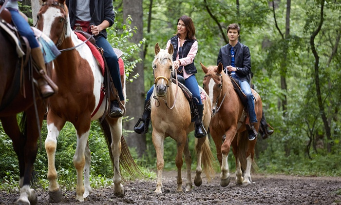 MD Ranch - Queen Creek: One-Hour Horseback Ride for Two or Four