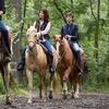 Ruta a caballo por el monte