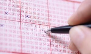 """Lottopalace: 3, 6 oder 9 Ziehungen gleichmäßig verteilt aus """"6aus49"""", """"EuroJackpot"""" und """"Powerball"""" bei Lottopalace (bis 75% sparen*)"""