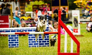 The Pet Show: The Pet Show: Day Ticket for Child, Adult, Two Adults or Family, 23–24 July at Stoneleigh Park (Up to 38% Off)