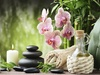 Balanced Life Therapy Center - El Cajon: $14 for $40 Worth of Services — Balanced Life Therapy Center