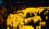 43% Off VIP Admission to 1000 Lights Water Lantern Festival