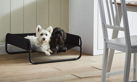Bunty Elevated Sided Dog Bed Groupon