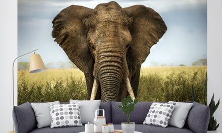 Animals Wall Mural in Choice of Design