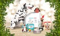 Coffret cadeau de Noël pour chiens et chats à 11,90 € avec Animalbox (52% de réduction)