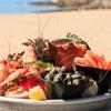 """2 plateaux de fruits de mer """"La Mandra"""""""