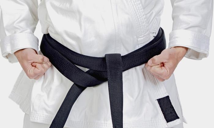 Steele's Karate - Central Area: 10 or 20 Karate, Kickboxing, or Boxing Classes at Steele's Karate (Up to 60% Off)