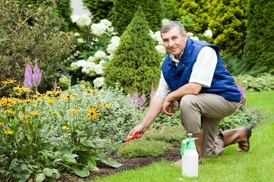 All County Landscaping: $100 for $182 Worth of Landscaping — All County Landscaping
