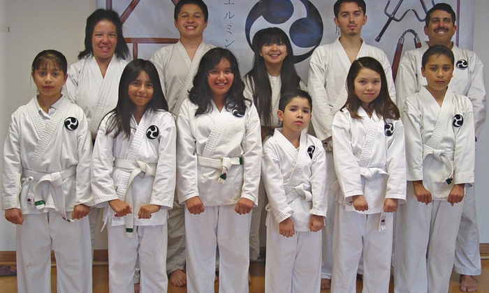Wilmington Karate Club - Wilmington: $14 for $40 Worth of Martial-Arts Lessons — Wilmington Karate Club