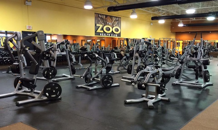 The Zoo Health Club - Multiple Locations: One- or Two-Month Gym Membership with Unlimited Fitness Classes at The Zoo Health Club (Up to 74% Off)