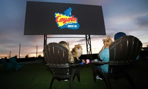 36% Off Drive-In Movie Admission at Coyote Drive-In - Leeds at Coyote Drive-In - Alabama, plus 6.0% Cash Back from Ebates.