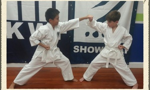 Elite Gymnastics Academy: $29 Off for Eight Karate Classes - Elite Gymnastics Academy (Value$100)