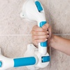 Bluestone Dual-Grip Suction Grab Bar