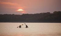 Two-Hour Kayak or Canadian Canoe Hire for Up to Two People with Wicklow Kayaking (Up to 37% Off*)