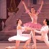 Salt Creek Ballet – Up to 57% Off Performance