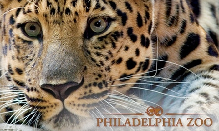 philly zoo coupons online