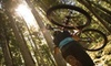 River City Bicycles - Woodmore - Dalewood: $25 for a Bike Performance Tune-up at River City Bicycles ($55 Value)