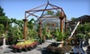 Little Red Farm Nursery - Eugene-Springfield: $20 for $40 Worth of Plants and More at Little Red Farm Nursery