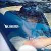 Up to 52% Off Windshield-Repair Services