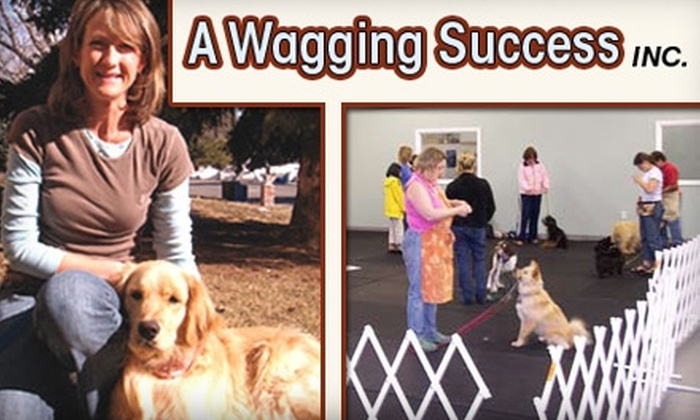 A Wagging Success - Littleton: $39 for a One-Hour Private Dog-Training Session at A Wagging Success ($100 Value)