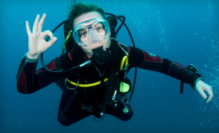 Discover Scuba Class for 1 (a $65 value) - Seascapes USA in Syosset