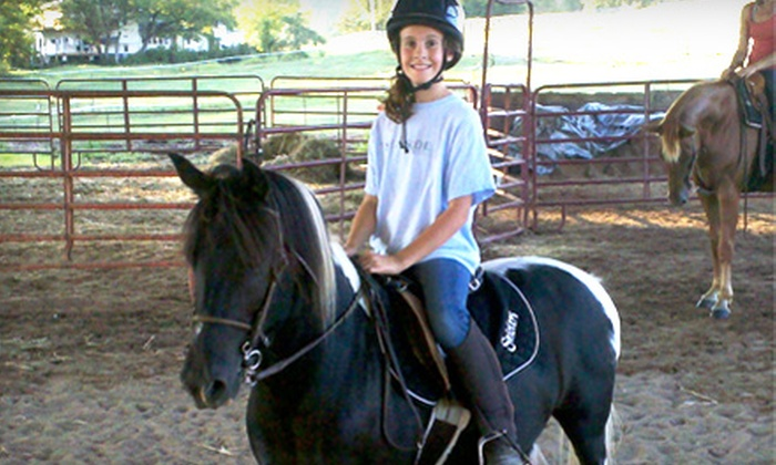 Blue Point Stables - Knoxville: 5 or 10 Horseback-Riding Lessons at Blue Point Stables