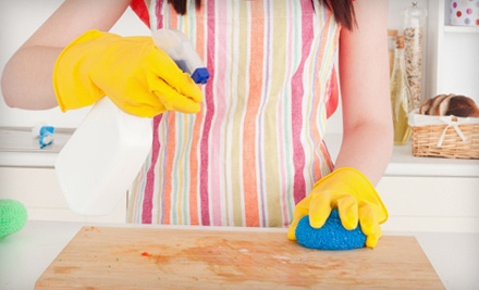 One 3-Hour Housecleaning Session (a $150 value) - Excellent Housecleaning in