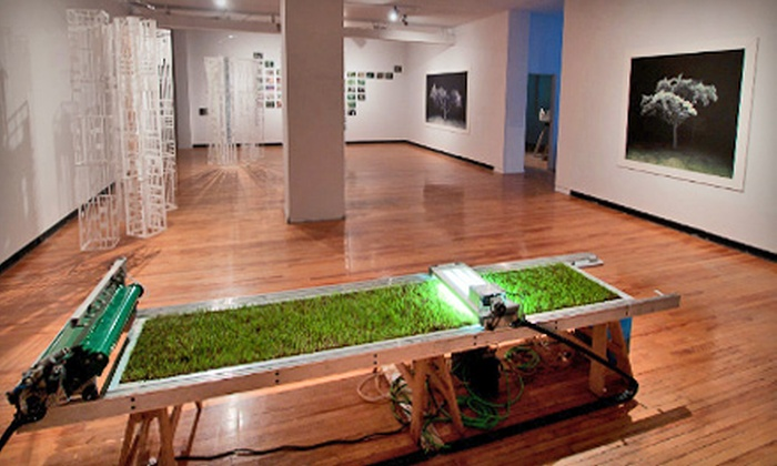 Neutral Ground - Transitional: $12 for a One-Year Contemporary Art Forum Membership to Neutral Ground ($24 Value)