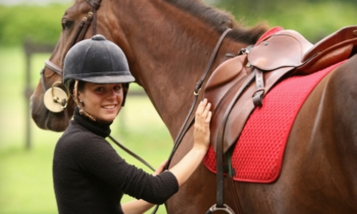 West End Equestrian Center - Gainesville: $30 for One-Hour Horseback-Riding Lesson at West End Equestrian Center ($60 Value)