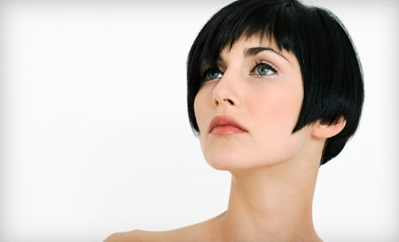 Haircut and Blow-Dry From Level 1 or 2 Stylist (up to a 61.02 value) - Becoming Hair Studio in Aurora