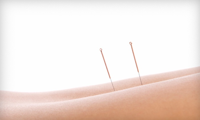 Turtle Dragon Health Services - Upper Boggy Creek: Acupuncture Treatment or Acupuncture Treatment with Follow-up Session at Turtle Dragon Health Services (Up to 56% Off)