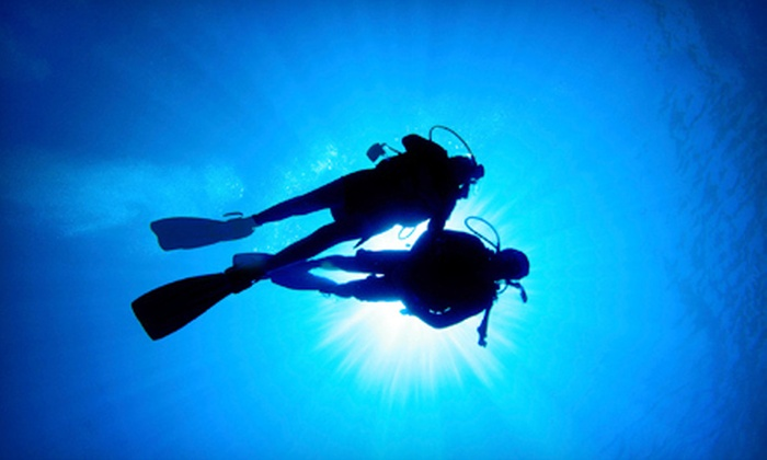Tortuga Bay - Greeley: PADI Scuba Course with Materials or Confined Water Scuba Training at Tortuga Bay in Greeley (Up to 54% Off)