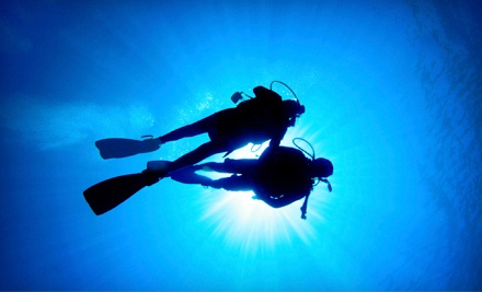 PADI Scuba Course (a $300 total value) - Tortuga Bay in Greeley