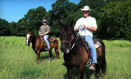 Triple M Ranch  - Triple M Ranch in Cape Charles