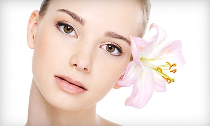 Visage de Beauté - Northbrook: $90 for a Microdermabrasion and Oxygen-Treatment Combo at Visage de Beauté in Northbrook ($220 Value)