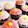 Up to 53% Off from Whisker's Cupcakes