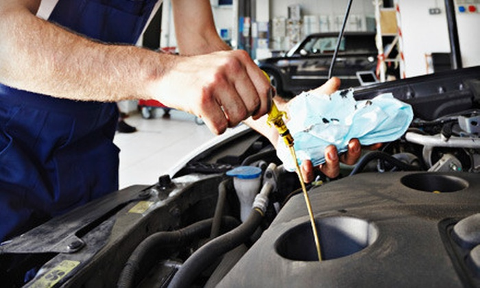 Nemesis Motors - Ellis Lake: $25 for Oil Change and Full-Engine Inspection at Nemesis Motors in Concord ($200 Value)