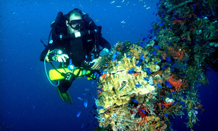 Northeast Scuba - Chelmsford: Try Scuba Instruction or SSI Open Water Referral or Full Certification at Northeast Scuba in Chelmsford (Up to 55% Off). Three Options Available.