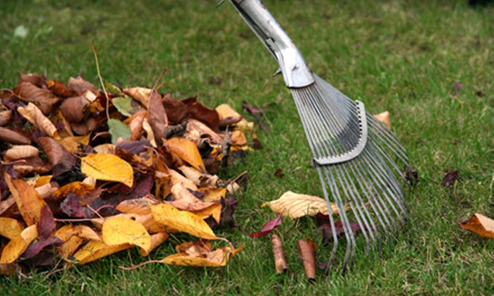 Worry Free Lawn Care - Edmond: One or Two Hours of Fall Yard Cleanup from Worry Free Lawn Care (51% Off)